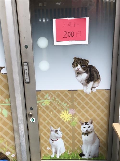 猫カフェきぶん屋